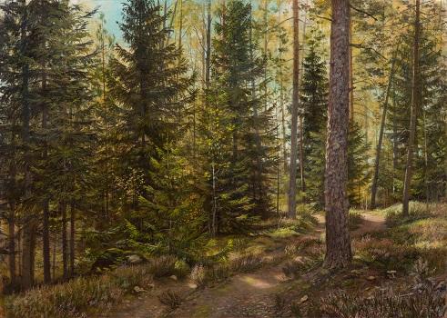 Дорога в солнечном лесу