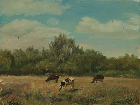 Коровки на лугу