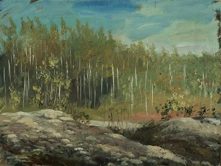 Лес за мхами