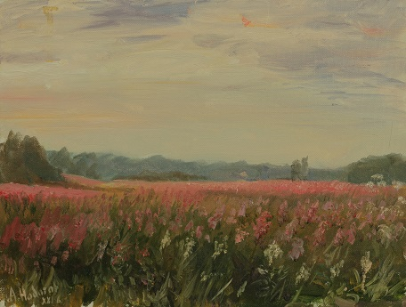 Розовое поле 2
