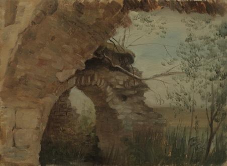Вид из разрушенного собора на Онегу